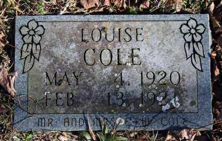 COLE, LOUISE - Searcy County, Arkansas | LOUISE COLE - Arkansas Gravestone Photos