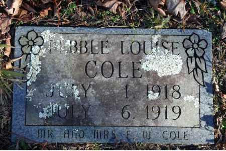 COLE, PEBBLE LOUISE - Searcy County, Arkansas | PEBBLE LOUISE COLE - Arkansas Gravestone Photos