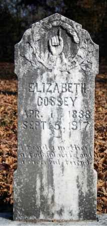 COSSEY, ELIZABETH - Searcy County, Arkansas | ELIZABETH COSSEY - Arkansas Gravestone Photos