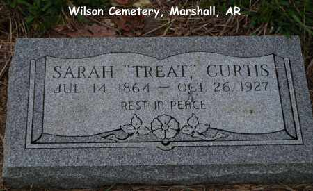 TREAT CURTIS, SARAH - Searcy County, Arkansas | SARAH TREAT CURTIS - Arkansas Gravestone Photos