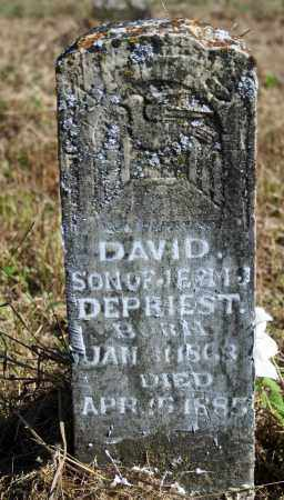DEPRIEST, DAVID - Searcy County, Arkansas | DAVID DEPRIEST - Arkansas Gravestone Photos