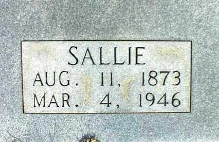 DODSON, SALLIE 2 - Searcy County, Arkansas | SALLIE 2 DODSON - Arkansas Gravestone Photos