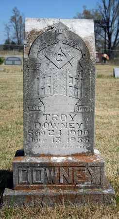DOWNEY, TROY - Searcy County, Arkansas | TROY DOWNEY - Arkansas Gravestone Photos
