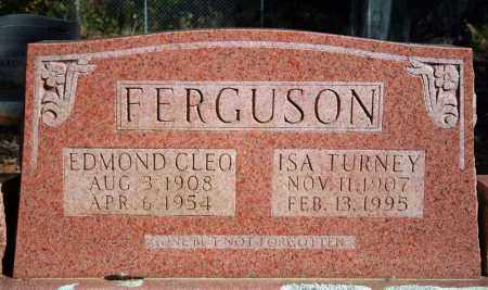 FERGUSON, EDMOND CLEO - Searcy County, Arkansas | EDMOND CLEO FERGUSON - Arkansas Gravestone Photos