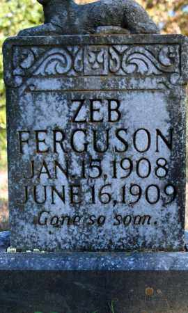FERGUSON, ZEB - Searcy County, Arkansas | ZEB FERGUSON - Arkansas Gravestone Photos