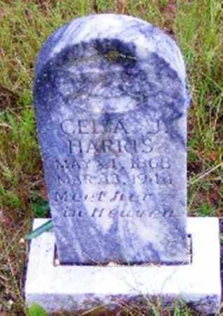 HARRIS, CELIA J. - Searcy County, Arkansas | CELIA J. HARRIS - Arkansas Gravestone Photos