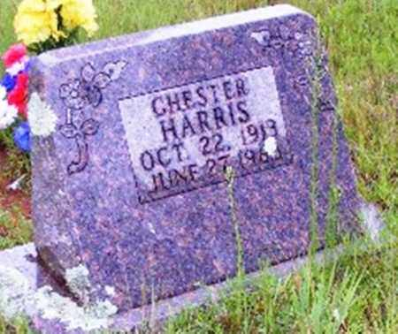HARRIS, CHESTER - Searcy County, Arkansas | CHESTER HARRIS - Arkansas Gravestone Photos
