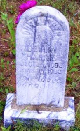 HARRIS, DELLIA - Searcy County, Arkansas | DELLIA HARRIS - Arkansas Gravestone Photos