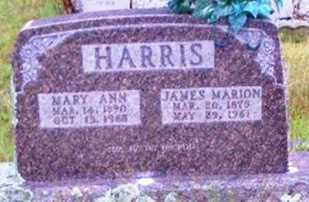 HARRIS, MARY ANN - Searcy County, Arkansas | MARY ANN HARRIS - Arkansas Gravestone Photos