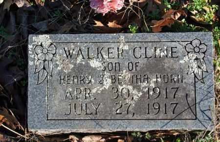 HORN, WALKER CLINE - Searcy County, Arkansas | WALKER CLINE HORN - Arkansas Gravestone Photos