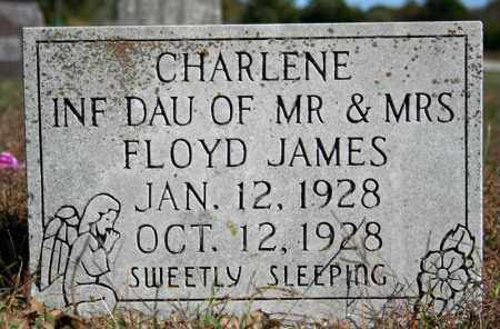 JAMES, CHARLENE - Searcy County, Arkansas | CHARLENE JAMES - Arkansas Gravestone Photos