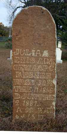 KESNER, JULIA ENIS A - Searcy County, Arkansas | JULIA ENIS A KESNER - Arkansas Gravestone Photos