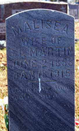 MARTIN, MALISEA - Searcy County, Arkansas | MALISEA MARTIN - Arkansas Gravestone Photos