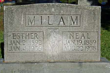 MILAM, NEAL - Searcy County, Arkansas | NEAL MILAM - Arkansas Gravestone Photos