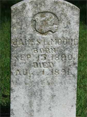 MOORE, JAMES C - Searcy County, Arkansas | JAMES C MOORE - Arkansas Gravestone Photos