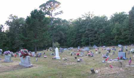 *TRACE RIDGE OVERVIEW,  - Searcy County, Arkansas |  *TRACE RIDGE OVERVIEW - Arkansas Gravestone Photos