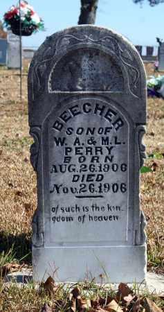 PERRY, BEECHER - Searcy County, Arkansas | BEECHER PERRY - Arkansas Gravestone Photos