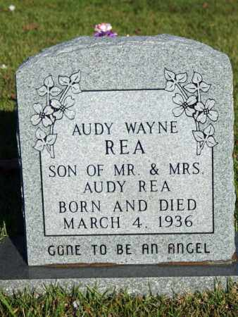 REA, AUDY WAYNE - Searcy County, Arkansas | AUDY WAYNE REA - Arkansas Gravestone Photos