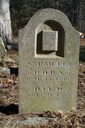 ROBERTSON REA, SARAH - Searcy County, Arkansas | SARAH ROBERTSON REA - Arkansas Gravestone Photos