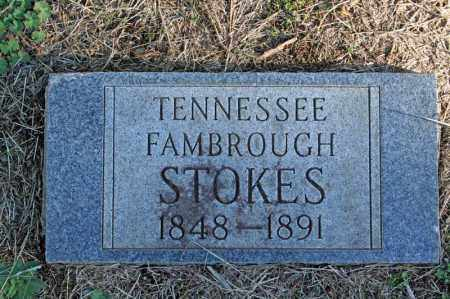 STOKES, TENNESSEE - Searcy County, Arkansas | TENNESSEE STOKES - Arkansas Gravestone Photos