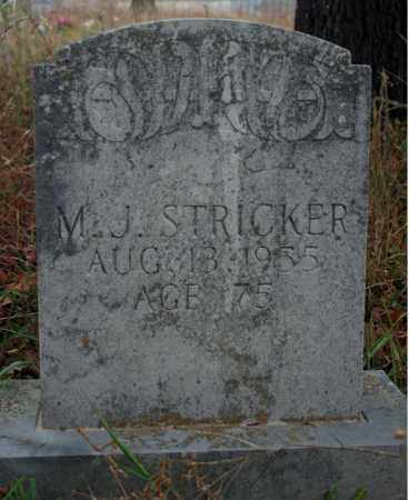 STRICKER, M. J. - Searcy County, Arkansas | M. J. STRICKER - Arkansas Gravestone Photos