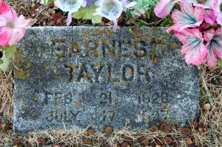 TAYLOR, EARNEST - Searcy County, Arkansas | EARNEST TAYLOR - Arkansas Gravestone Photos