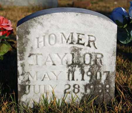TAYLOR, HOMER - Searcy County, Arkansas | HOMER TAYLOR - Arkansas Gravestone Photos