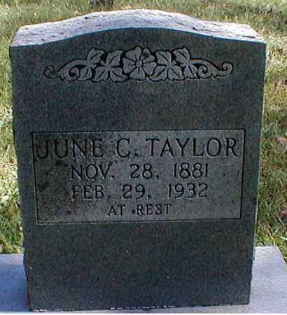 TAYLOR, JUNE C. - Searcy County, Arkansas | JUNE C. TAYLOR - Arkansas Gravestone Photos