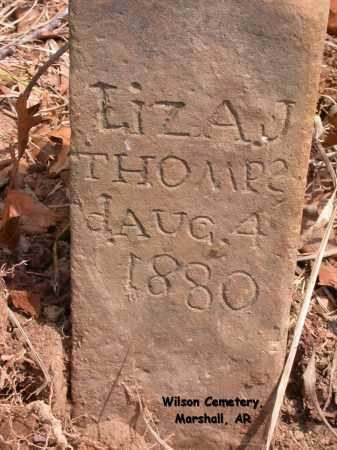 THOMPSON, LIZA J. - Searcy County, Arkansas   LIZA J. THOMPSON - Arkansas Gravestone Photos