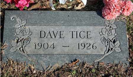 TICE, DAVE - Searcy County, Arkansas | DAVE TICE - Arkansas Gravestone Photos