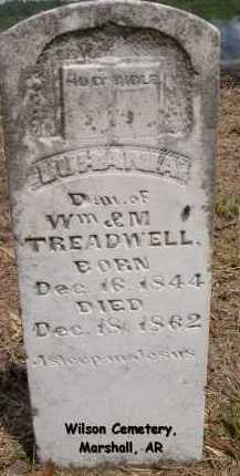 TREADWELL, LUHANIA - Searcy County, Arkansas | LUHANIA TREADWELL - Arkansas Gravestone Photos