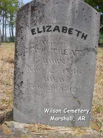 OTT TREAT, ANN ELIZABETH - Searcy County, Arkansas | ANN ELIZABETH OTT TREAT - Arkansas Gravestone Photos