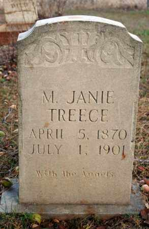 REEVES TREECE, M. JANIE - Searcy County, Arkansas | M. JANIE REEVES TREECE - Arkansas Gravestone Photos