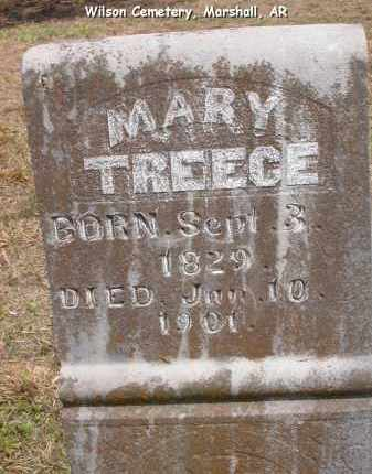 TREECE, MARY - Searcy County, Arkansas | MARY TREECE - Arkansas Gravestone Photos