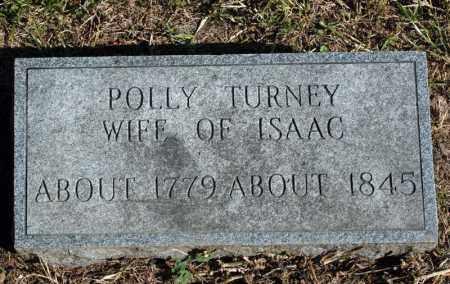 TURNEY, POLLY - Searcy County, Arkansas | POLLY TURNEY - Arkansas Gravestone Photos