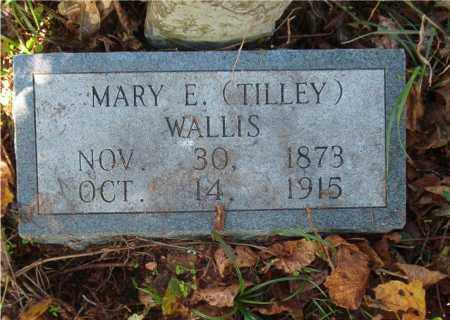 TILLEY WALLIS, MARY E. - Searcy County, Arkansas | MARY E. TILLEY WALLIS - Arkansas Gravestone Photos