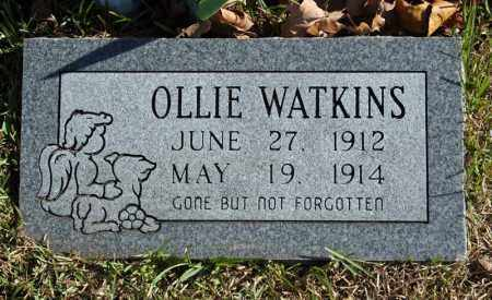 WATKINS, OLLIE - Searcy County, Arkansas | OLLIE WATKINS - Arkansas Gravestone Photos