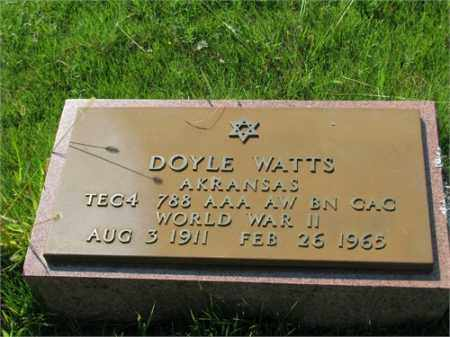 WATTS (VETERAN WWII), DOYLE - Searcy County, Arkansas | DOYLE WATTS (VETERAN WWII) - Arkansas Gravestone Photos