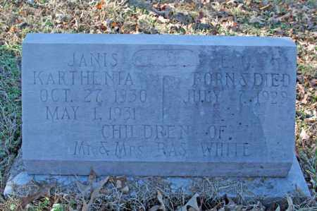 WHITE, E.C. - Searcy County, Arkansas | E.C. WHITE - Arkansas Gravestone Photos