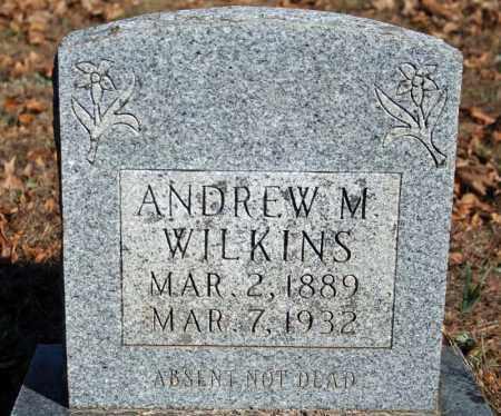 WILKINS, ANDREW M. - Searcy County, Arkansas | ANDREW M. WILKINS - Arkansas Gravestone Photos