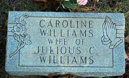 "WILLIAMS, ELIZABETH ""CAROLINE""  (DREWRY) - Searcy County, Arkansas 