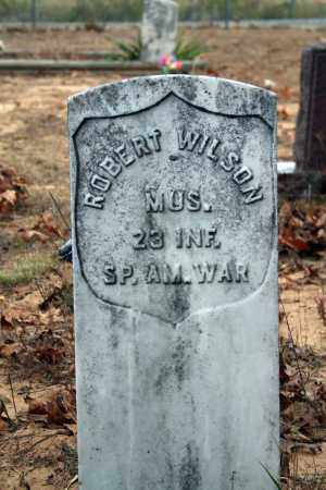 WILSON (VETERAN SAW), ROBERT - Searcy County, Arkansas | ROBERT WILSON (VETERAN SAW) - Arkansas Gravestone Photos