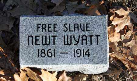 WYATT, NEWT - Searcy County, Arkansas | NEWT WYATT - Arkansas Gravestone Photos