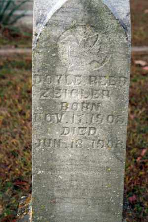 ZEIGLER, DOYLE REED - Searcy County, Arkansas | DOYLE REED ZEIGLER - Arkansas Gravestone Photos