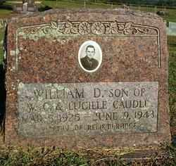 CAUDLE, WILLIAM D - Sebastian County, Arkansas | WILLIAM D CAUDLE - Arkansas Gravestone Photos