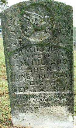 DILLARD, CAMILLA J - Sebastian County, Arkansas | CAMILLA J DILLARD - Arkansas Gravestone Photos