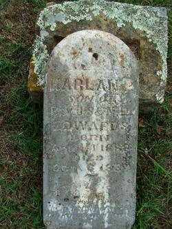 EDWARDS, HARLAN P - Sebastian County, Arkansas | HARLAN P EDWARDS - Arkansas Gravestone Photos
