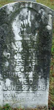 HESTER, IVY PEARL - Sebastian County, Arkansas | IVY PEARL HESTER - Arkansas Gravestone Photos