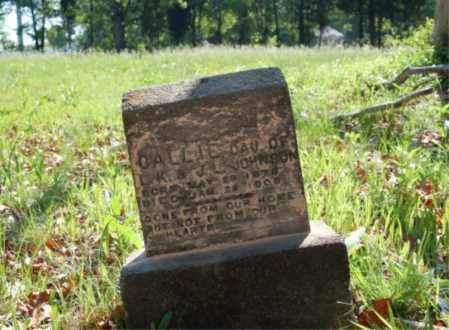 JOHNSON, CALLIE - Sebastian County, Arkansas | CALLIE JOHNSON - Arkansas Gravestone Photos