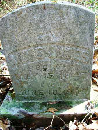 JONES, ANNIE - Sebastian County, Arkansas | ANNIE JONES - Arkansas Gravestone Photos